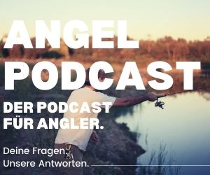 angeln podcast mobile